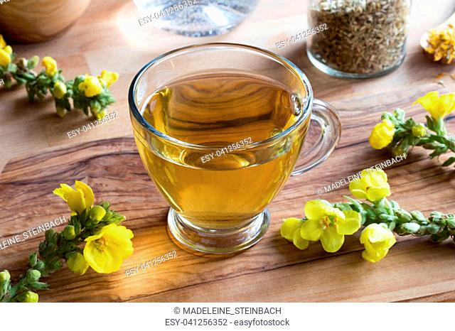 A cup of mullein tea with fresh mullein flowers in the background
