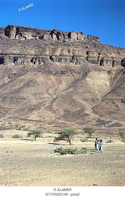 Mauritania, Sahara, Adrar region, between Atar and Terjit