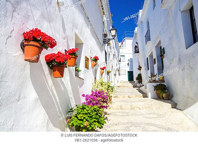 Whitewashed stepped lane with colourful flowerpots in Frigiliana White village, Axarquia, Malaga, Andalusia, Spain