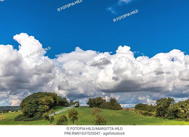 Hilly landscape at Barterode, Flecken Adelebsen, Naturraum Sollingvorland, Landkreis Göttingen, Niedersachsen, Germany, HDR / Hügellandschaft in Barterode