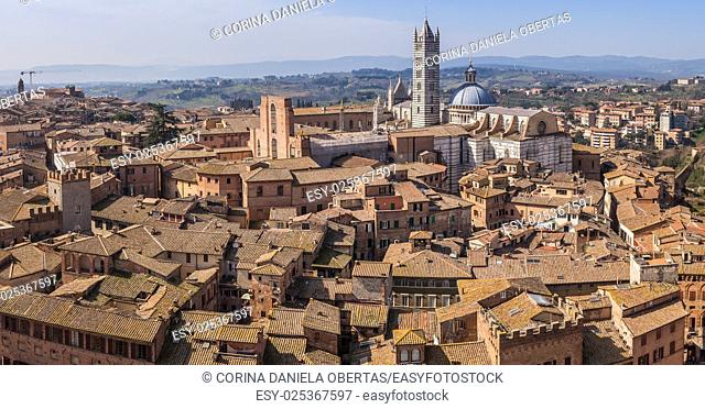 View above Siena roofs with the cathedral in the background, Tuscany, Italy