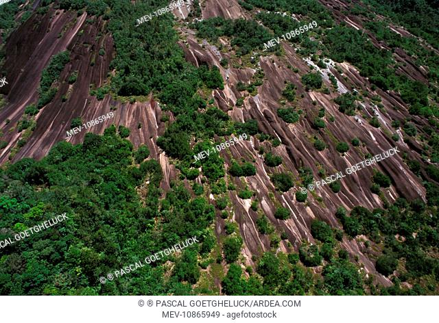 Inselberg - aerial view French Guiana forest. French Guiana