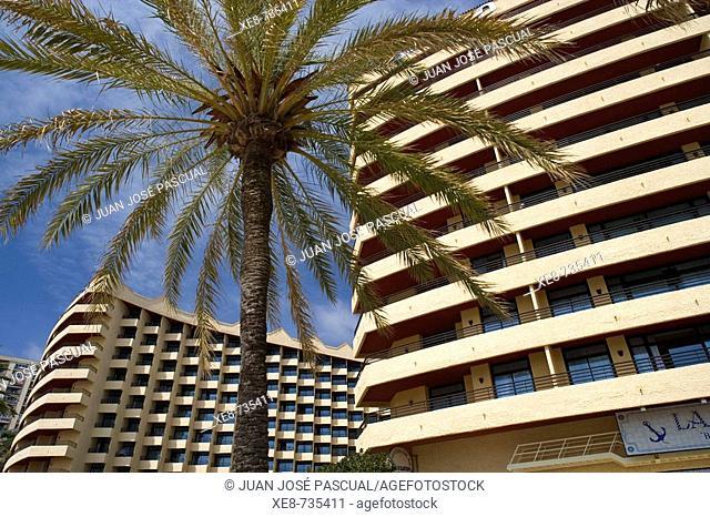 Tourist apartments, Torremolinos, Costa del Sol. Malaga province, Andalucia, Spain