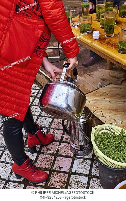 Chine, Province du Sichuan, Mingshan, marché de thé vert pour les grossites / China, Sichuan province, Mingshan, green tea wholesaler market