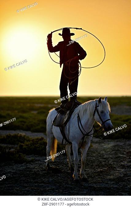 Gardian lassoing standing on a camargue horse. .