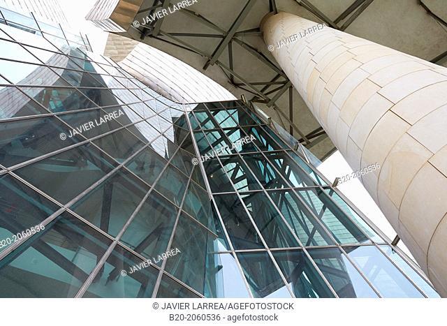 Guggenheim Museum, Bilbao, Bizkaia, Basque Country, Spain