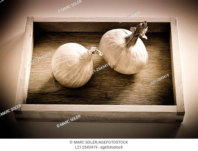 Two onions in a wooden box