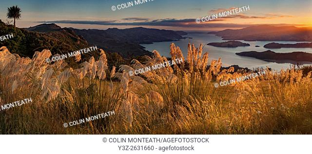 Lyttelton harbour, dawn panorama from Port Hills, Christchurch, Canterbury