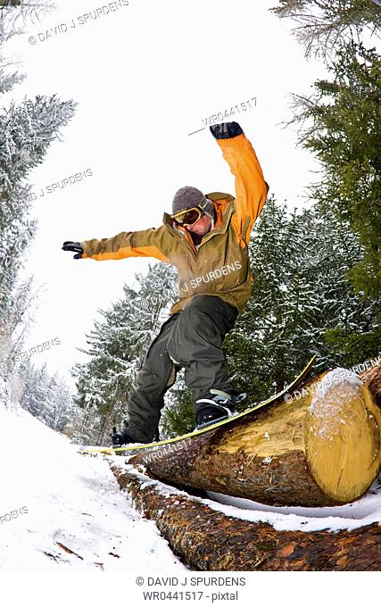 A snowboarder slides a log in a forest