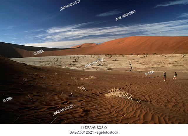 Namibia - Namib Naukluft Park - Sossusvlei. The dry lake bed called Dead Vlei