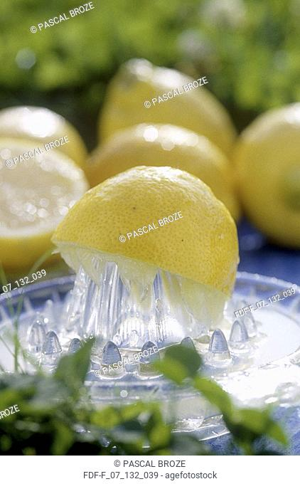 Close-up of a juicer with a lemon