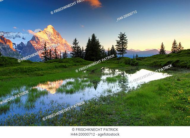 Eiger and Mönch in the Bernese Oberland, Switzerland