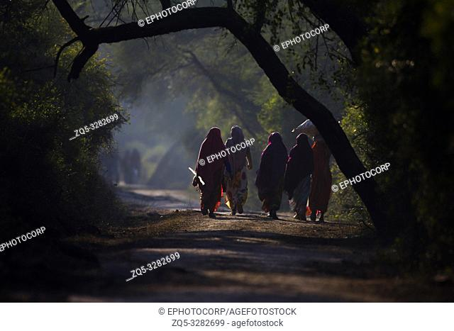 Women going for daily chores, Reflection, Keoladeo Ghana National Park, Bharatpur, Rajasthan, India