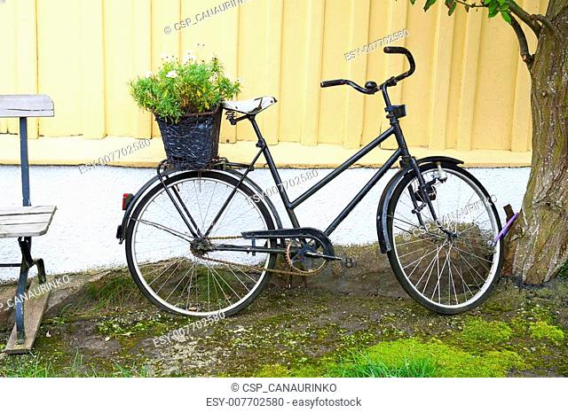 Scandinavian bicycle