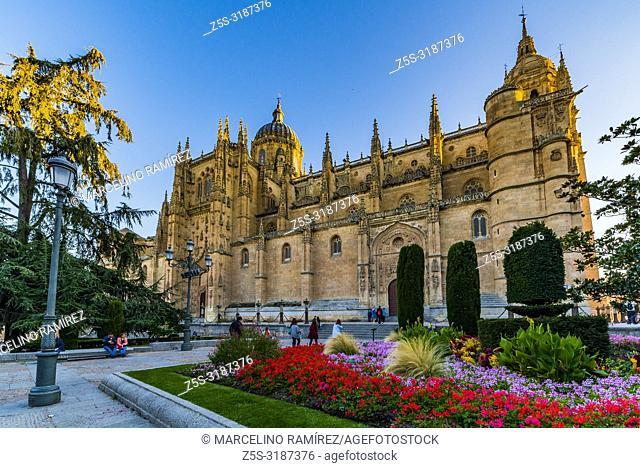 Facade of the Puerta de Ramos of the New Cathedral, from the Plaza de Anaya. Salamanca, Castilla y Leon, Spain, Europe