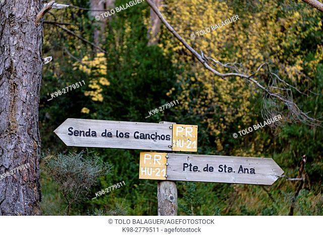 Camino de los Ganchos y Boca del Infierno route, Valley of Hecho, western valleys, Pyrenean mountain range, province of Huesca, Aragon, Spain