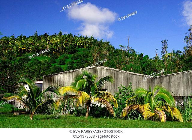 A rum distillery in Martinique, a Caribean Island