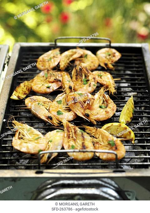 Skewered shrimps on barbecue in the open air