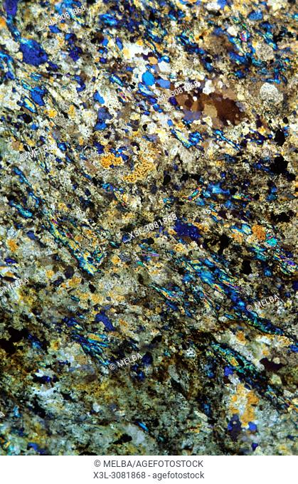 Schist. Metamorphic rock. Pyrenees. Spain. Petrograhic microscope