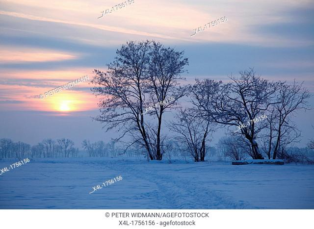 Snow covered landscape in winter