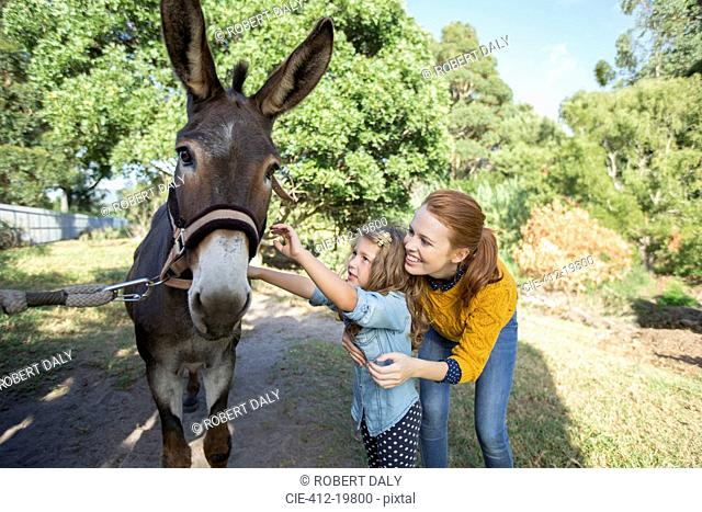 Student and teacher petting donkey at zoo