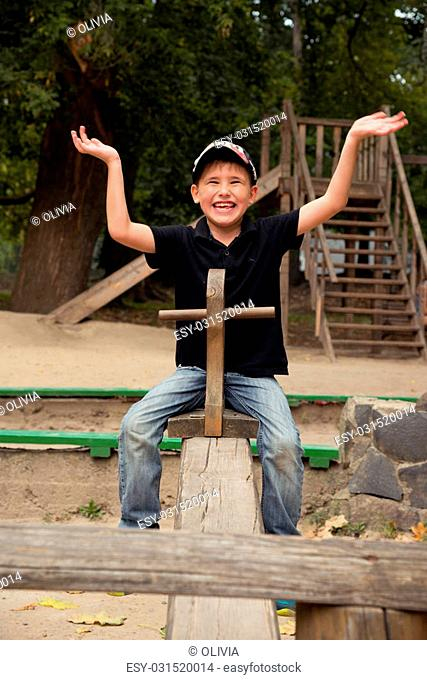 The boy on wooden a swing in the park