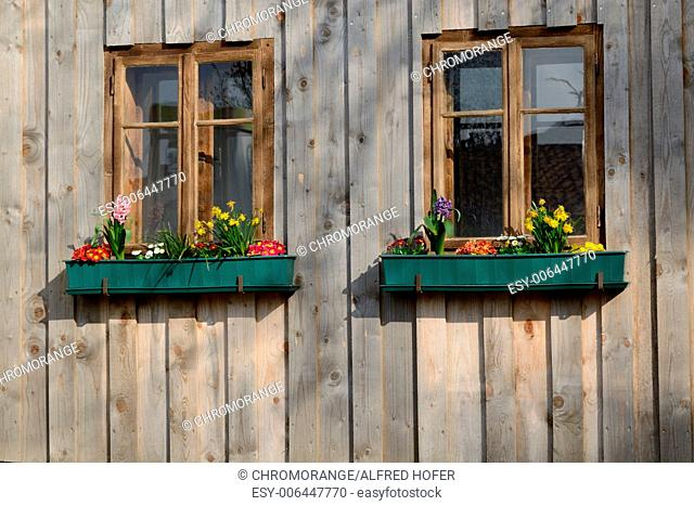 rustic wooden windows and floral decoration