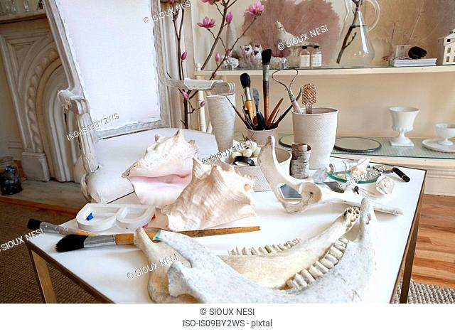 Interior stylist's table with seashells, brushes and animal bones