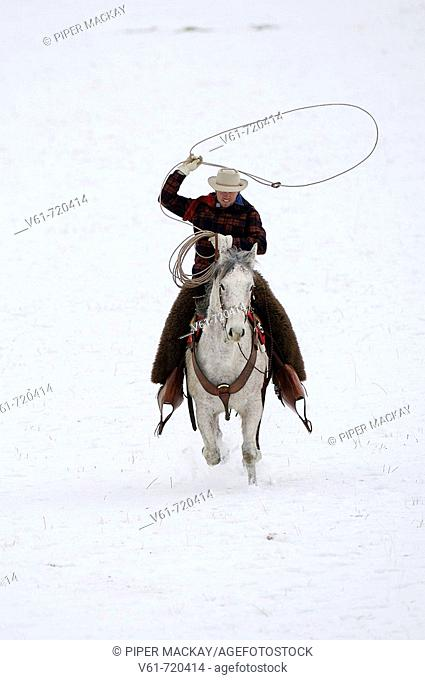 Cowboy and larieat riding through winter snow Shell, Wyoming, Usa