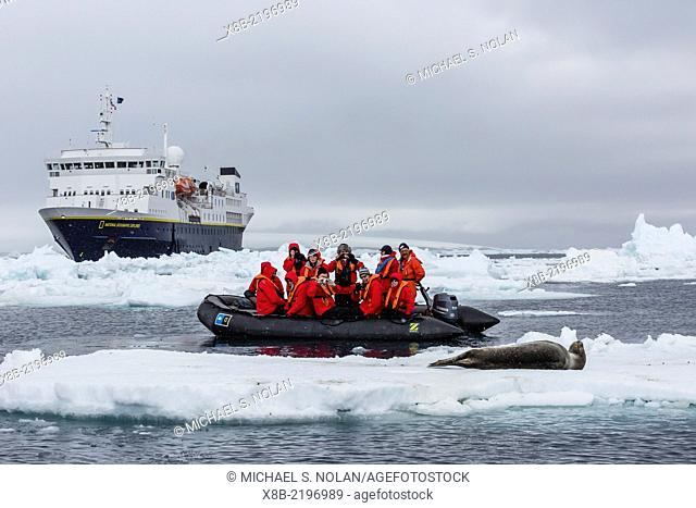 Lindblad Expeditions guests in a Zodiac approach a leopard seal at Brown Bluff, Weddell Sea, Antarctica