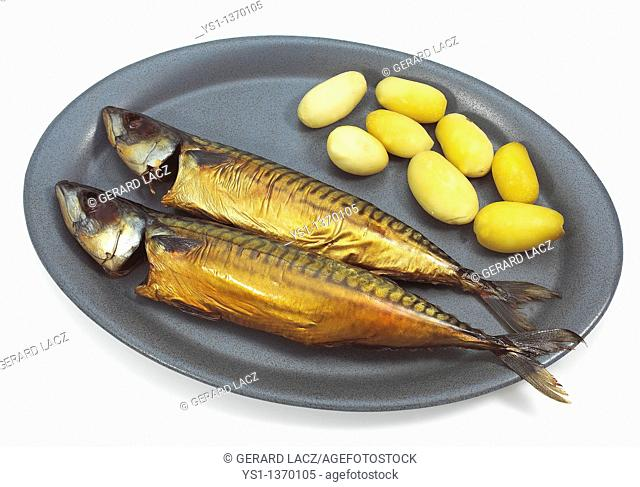 SMOKED MACKERL scomber scombrus WITH POTATOES ON A PLATE
