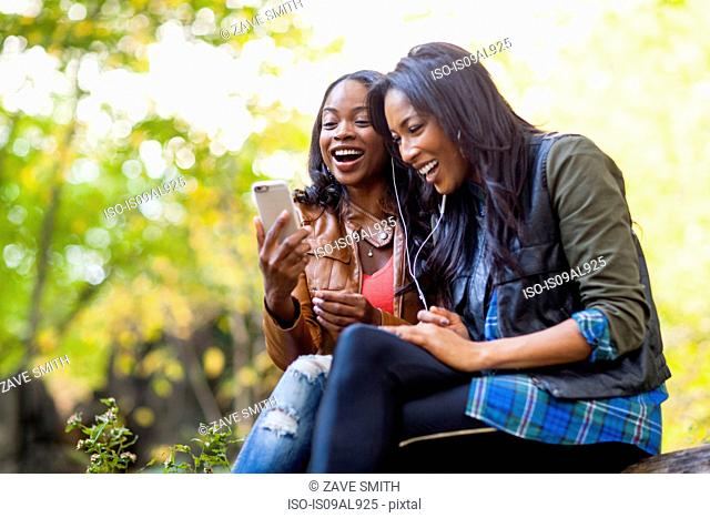Young women using smartphone together in park