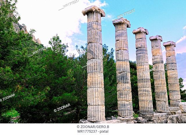Columns of Athena temple in Priene Turkey