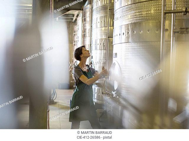 Vintner checking stainless steel vat in winery cellar