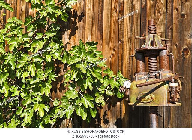 Antique wine press at Harmony Cellars, Harmony, California USA