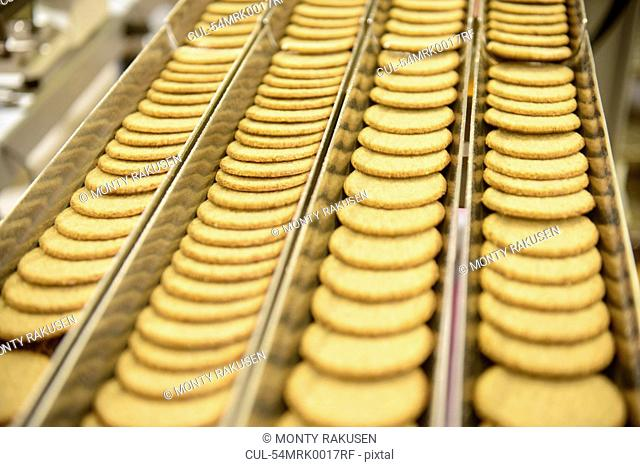 Biscuits on production line in factory
