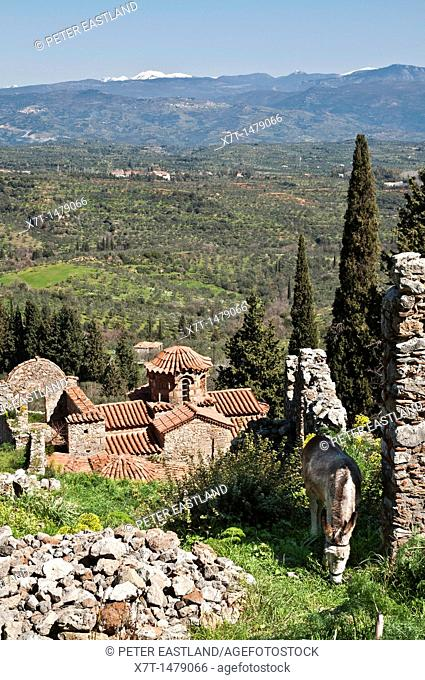 The hill of Mystra with its Byzantine ruins, looking towards mount Parnon in the, Peloponnese, Greece