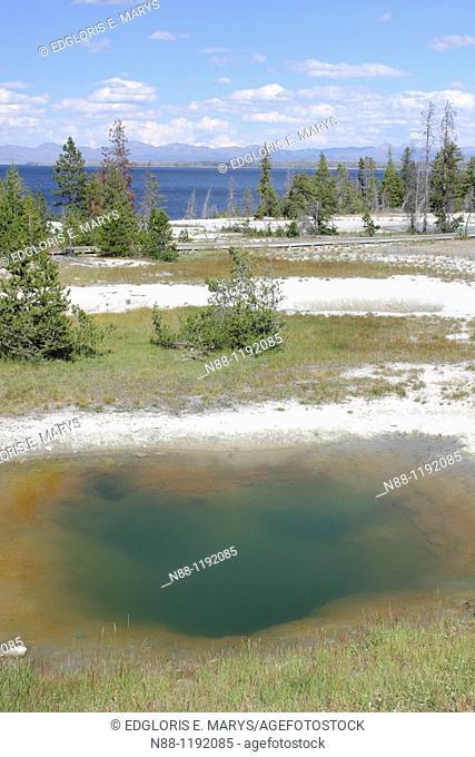 Colorful hot pool through West Thumb Geyser Basin, Yellowstone Lake, Yellowstone National Park, Wyoming, USA