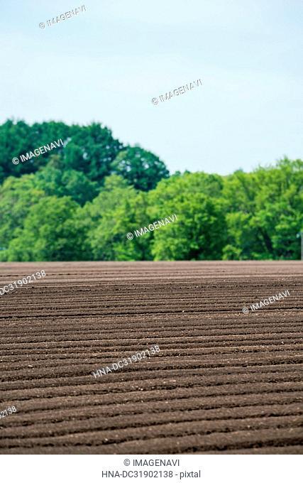 Farmland in Hokkaido, Japan