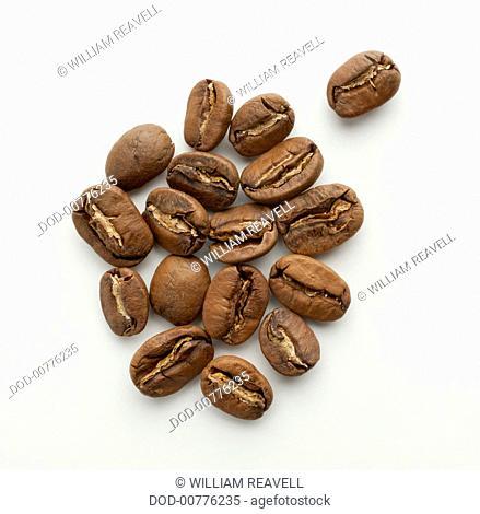 Nicaragua, Pacamara washed coffee beans