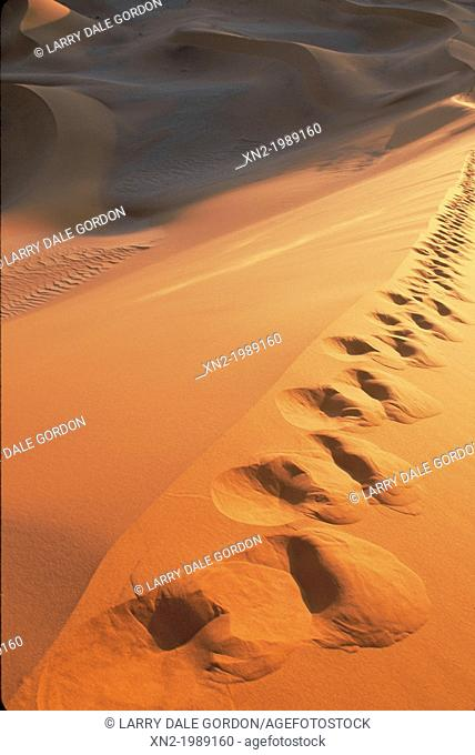 Footprints on the dunes
