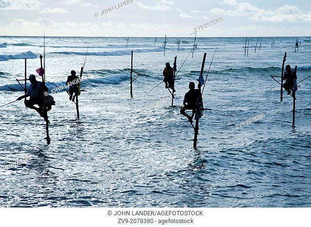 Sri Lankan Stilt Fishermen - Stilt fishing is fishing in relatively shallow water on a platform made up of a stilt. This is a common method used by Sri Lankan...