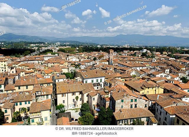 View from Torre Palazzo Guinigi tower, Lucca, Tuscany, Italy, Europe