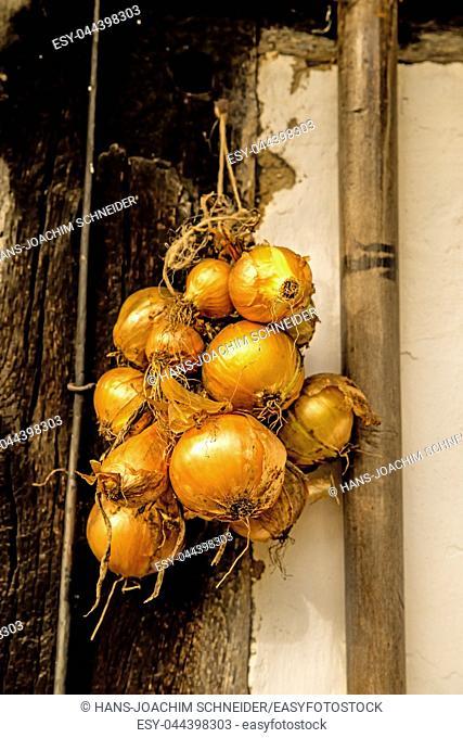 onions, braided at an old farm house