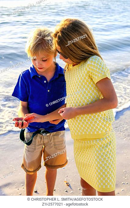 Young pre-teen girl and her younger brother looking for seashells at sunset on Siesta Key beach in Florida
