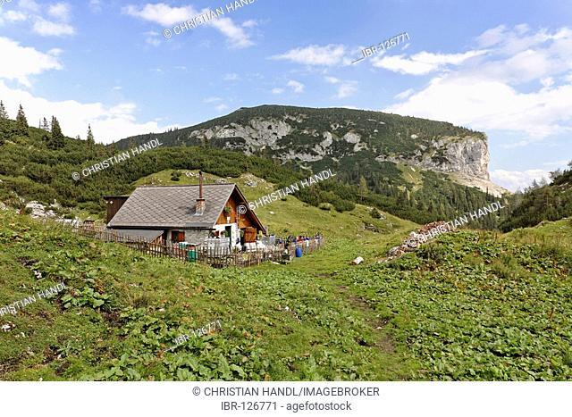 Bärenboden alp, Mountain Hochschwab, Styria, Austria