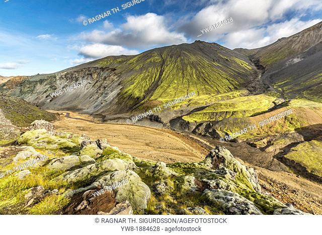 Lava and moss landscape, Landmannalaugar, Iceland Landmannalaugar- popular destination for hiking and camping with unusual geological elements such as...