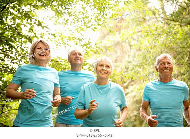 MODEL RELEASED. Four people running in a race, smiling