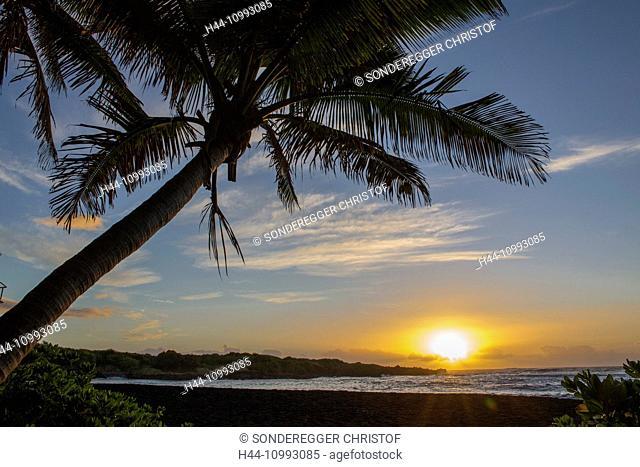Big Island, palms, Punaluu, Black sand Beach, Big Island, USA, Hawaii, America, sunrise