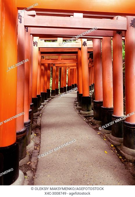 Senbon torii, a long empty path of Vermillion red Torii gates at Fushimi Inari Taisha shrine in Kyoto, Japan
